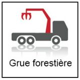 Picto grue forestière